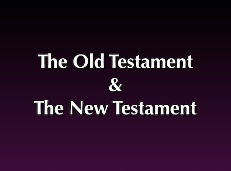 the new testament questions and answers Frequently asked questions  quiz on the new american bible all answers are based on the old testament of the new american bible,.